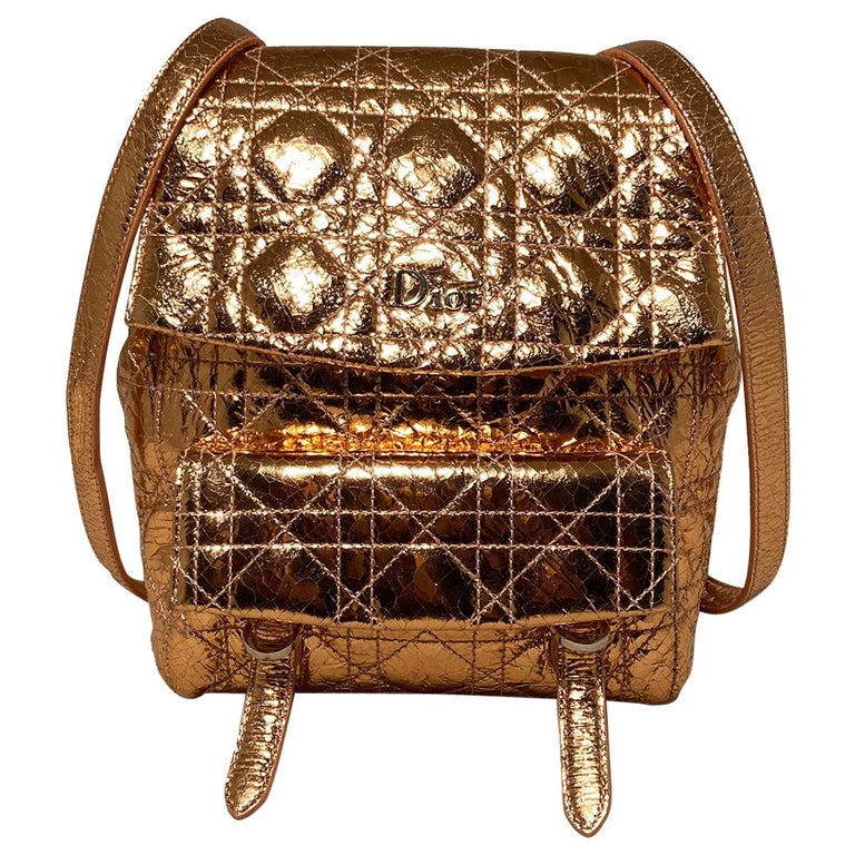 Dior Stardust Metallic Rose Gold Leather Backpack For Sale
