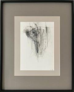 Bul Il - expressive line drawing