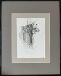 Bull - expressive line drawing