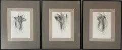 Bulls II (triptych) - expressive line drawing
