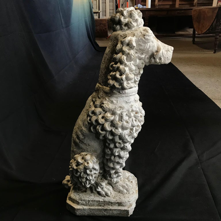 Dog Lovers' Life-Sized Stone French Poodle Sculpture Statue In Good Condition For Sale In Hopewell, NJ