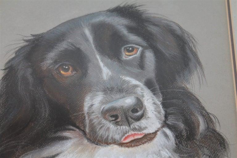 Adirondack Dog Oil & Watercolor Signed Victoria 1986 For Sale