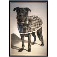 """Nantawang """"Dog with Blanket"""", 2010 Hyperrealist Drawing"""