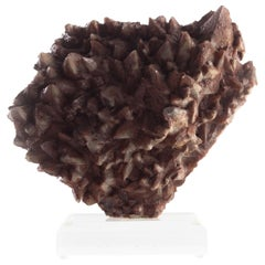 Dogtooth Calcite on Museum Mount