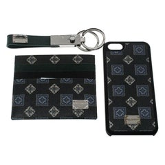 Dolce and Gabbana Green Gift Box Set (Card Holder, iPhone 5 Case and Key Holder)
