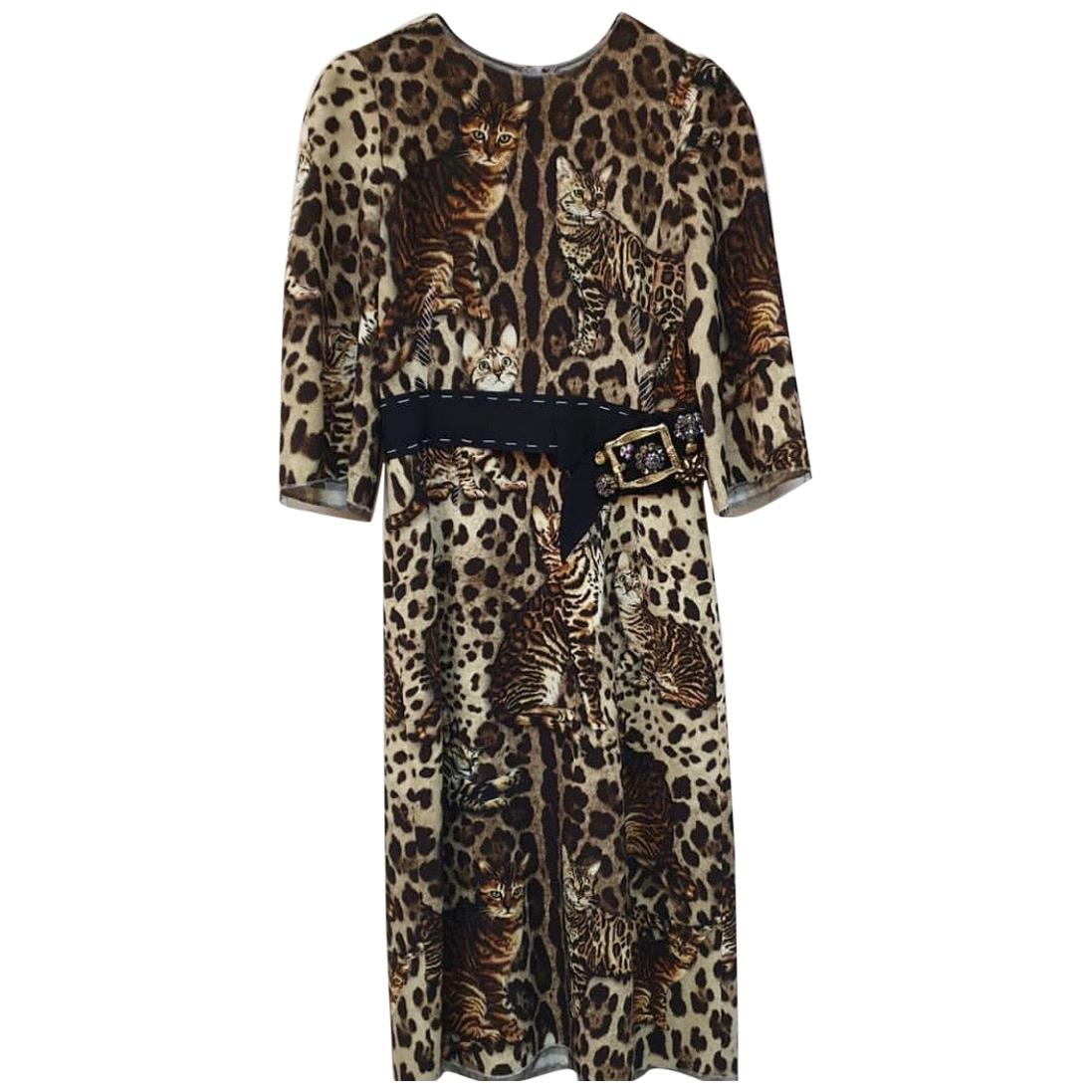 Dolce & Gabbana Belted Bengal Cat Print Cady Midi Dress