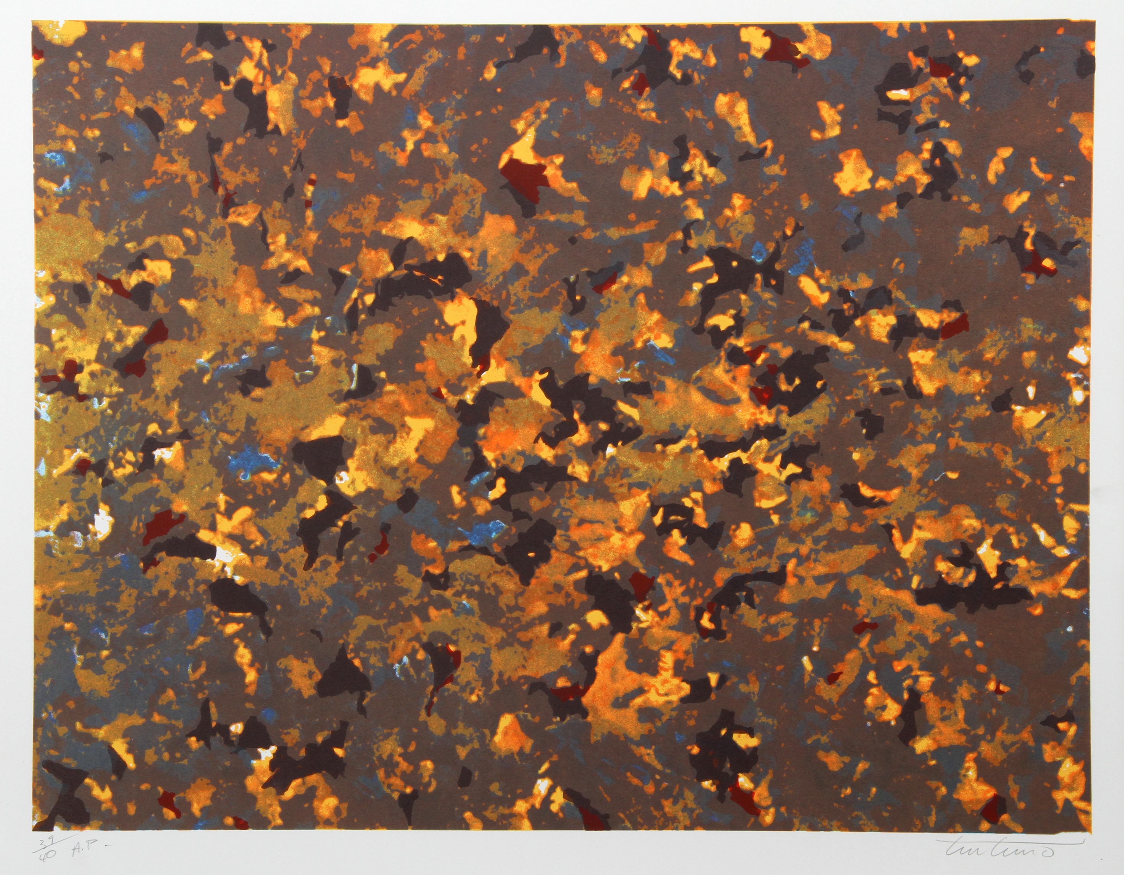 Fire, Abstract Silkscreen by Domenick Turturro