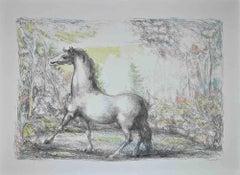Horse - Original Lithograph by Domenico Purificato - 1970s