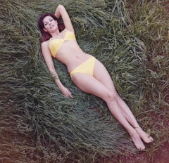 Raquel Welch Lying in the Grass Globe Photos Fine Art Print