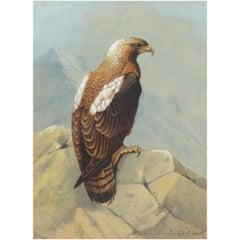 """Donald BIRBECK 'XX' 20th Century """"Eagle"""""""