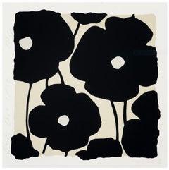 Black Poppies, Dec 2 2020