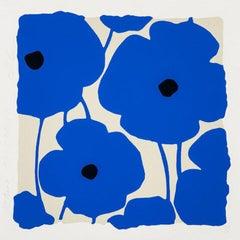 Blue Poppies, Dec 2 2020