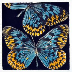 Butterflies, Donald Sultan, 20-color silkscreen with flocking