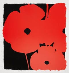 Donald Sultan, Big Poppies