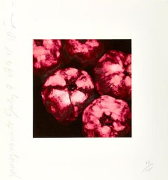 Donald Sultan 'Pomegranate July 9, 1994' Limited Edition, Signed Print