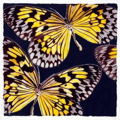 Monarchs, Donald Sultan, 22-color silkscreen with flocking