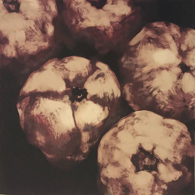 POMEGRANATES - Print by Donald Sultan