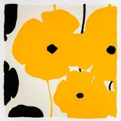Yellow & Black Poppies Feb 3 2020