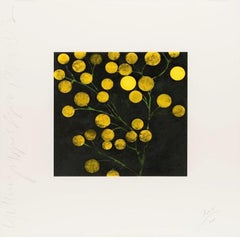Yellow Peppers, Donald Sultan