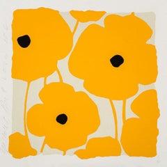 Yellow Poppies, Dec 2 2020