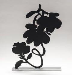 Black Lantern Flowers