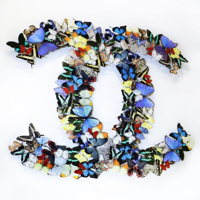 French Double Chanel Butterflies Glass Box Frame Wall Decoration For Sale