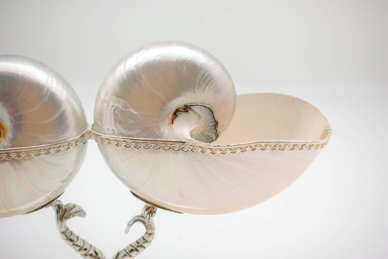 Neoclassical Double Nautilus with Italian Sterling Silver Triton Base For Sale