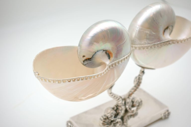 Contemporary Double Nautilus with Italian Sterling Silver Triton Base For Sale
