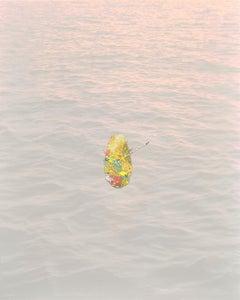 Float - Enamel on Digital Print Photograph, Collaborative Piece