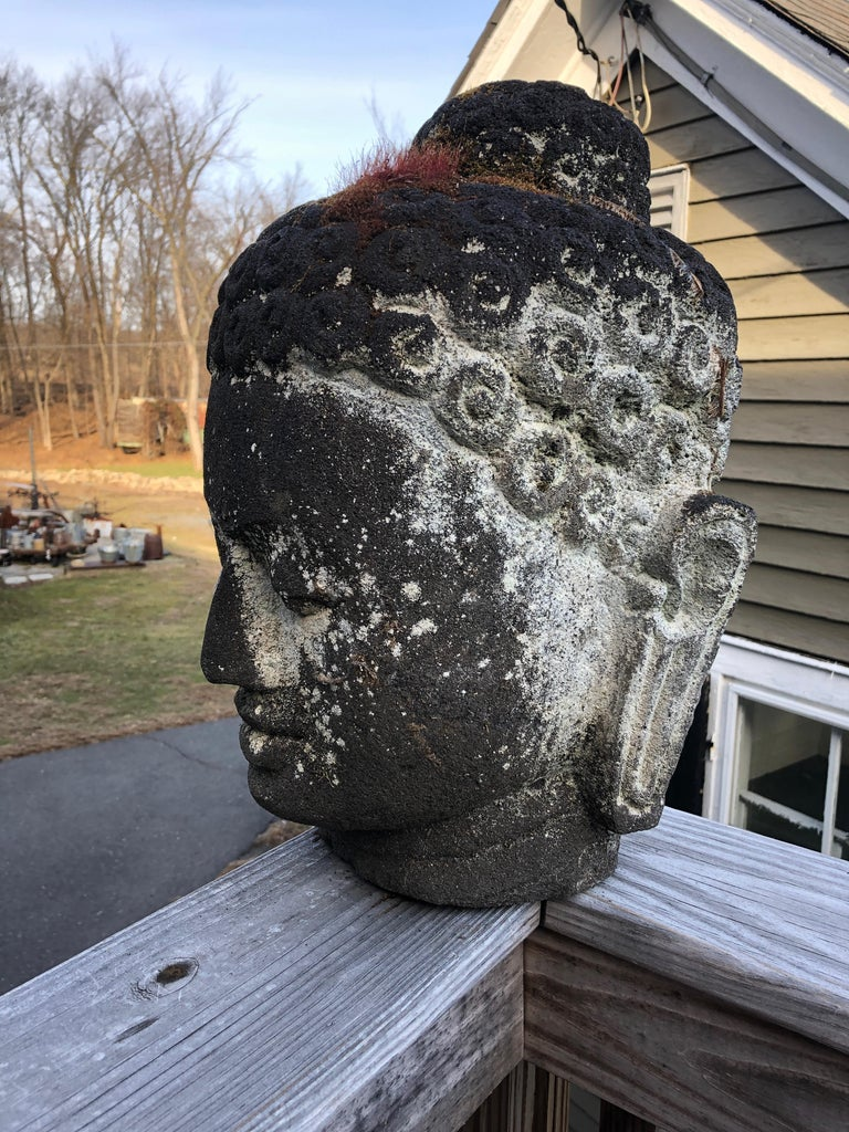 Dramatic Cast Stone Buddha Head Garden Sculpture For Sale 1