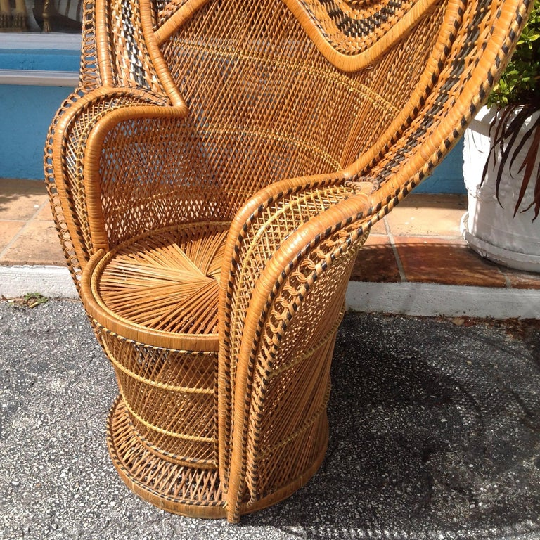 Dramatic Peacock Chair For Sale 4