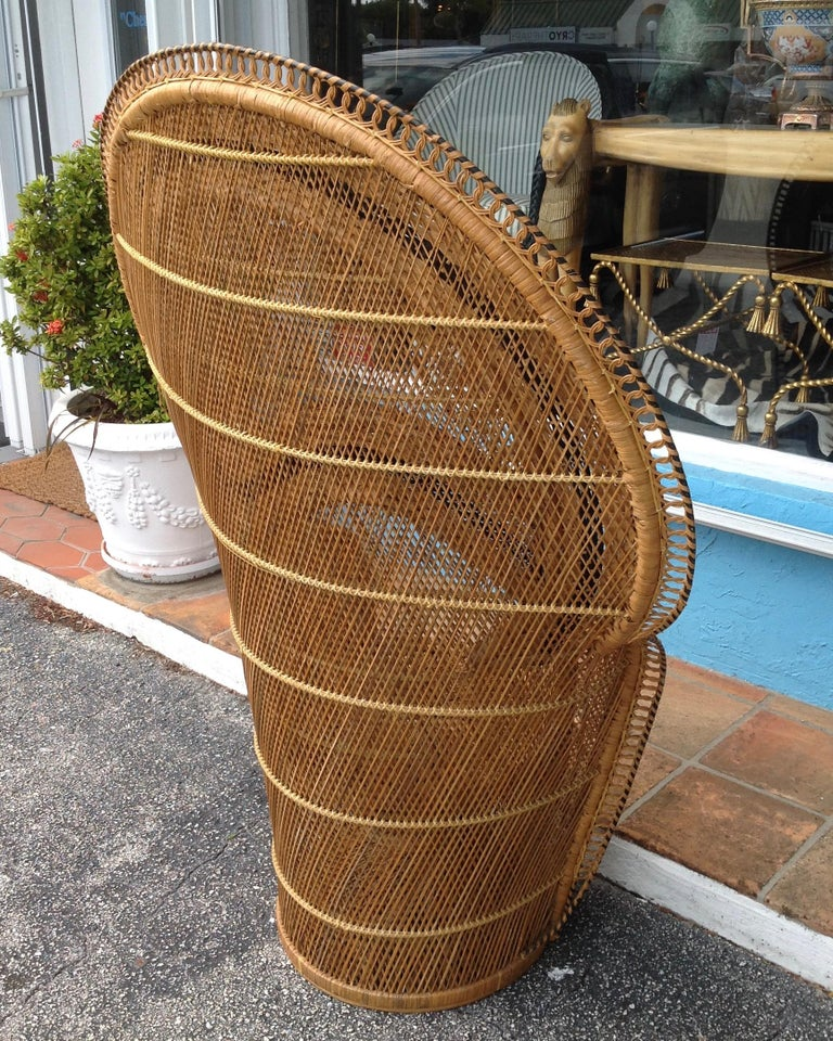 Mid-20th Century Dramatic Peacock Chair For Sale