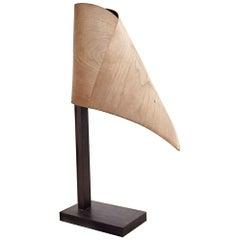 Drapé Lamp by Jean-Baptiste Van den Heede