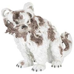 Dresden Terrier