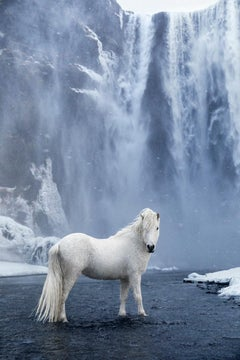 White Horse Beneath a Waterfall, Color Photography, Vertical