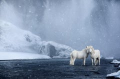 White Horses Standing Beneath a Waterfall, Color Photography, Horizontal