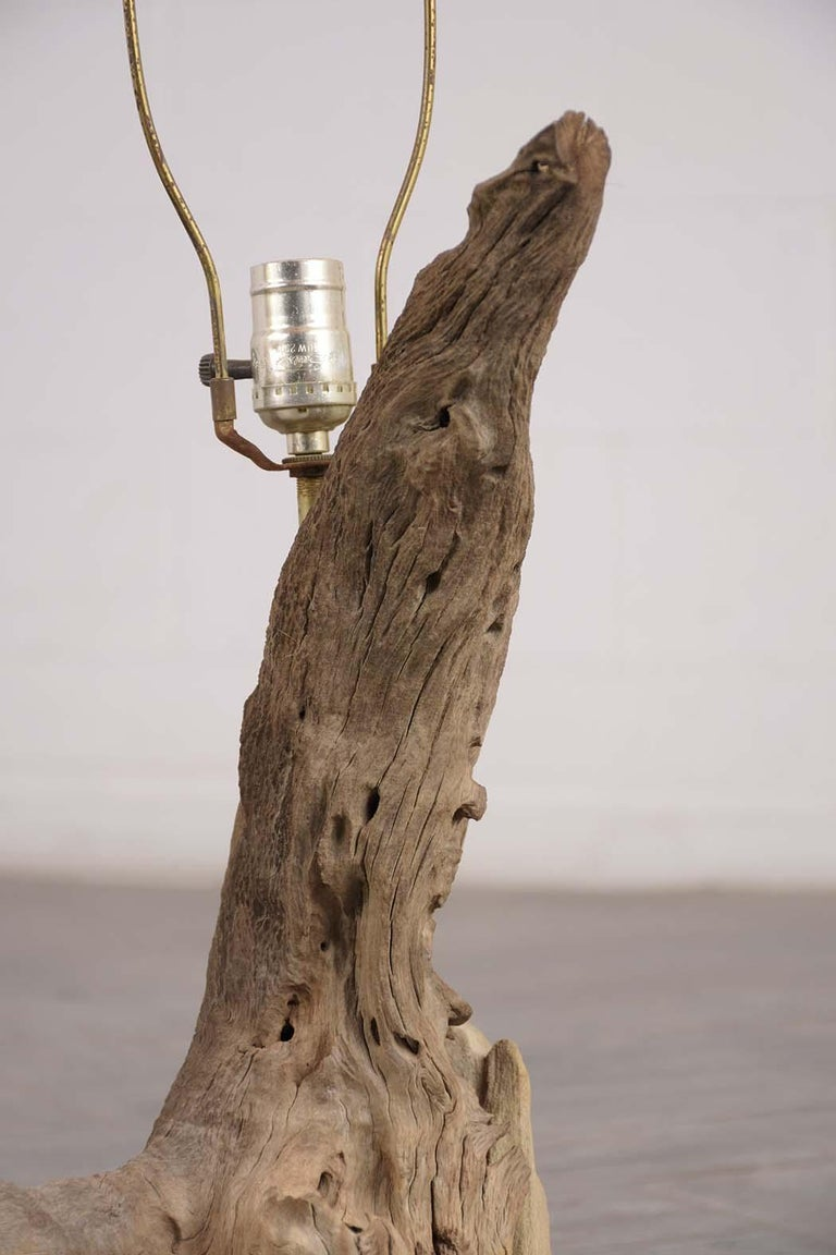 Hand-Crafted Driftwood Table Lamp, circa 1950 For Sale