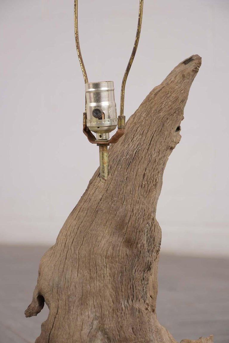 Driftwood Table Lamp, circa 1950 In Good Condition For Sale In Los Angeles, CA