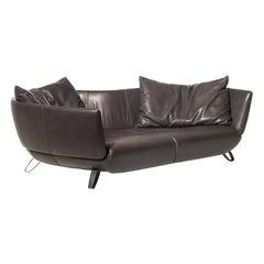 DS-102 Sofa by De Sede