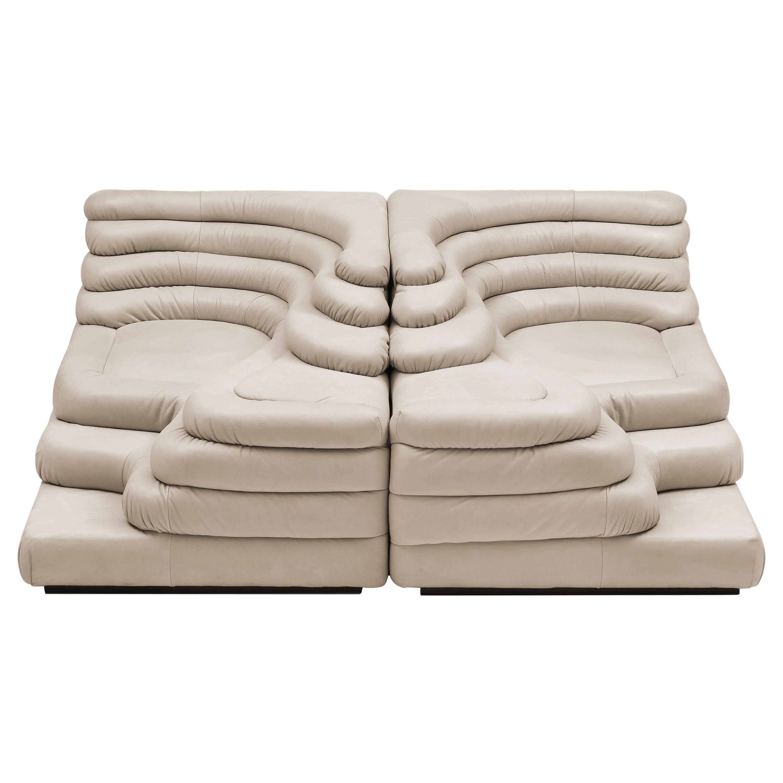 DS-1025 Set of 2 Sofas by De Sede