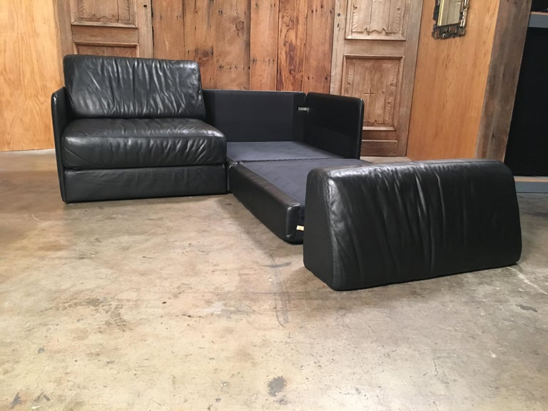 DS 76, De Sede Leather Sofa For Sale 9