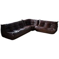 Dubai Brown Leather Togo Living Room Set by Michel Ducaroy for Ligne Roset