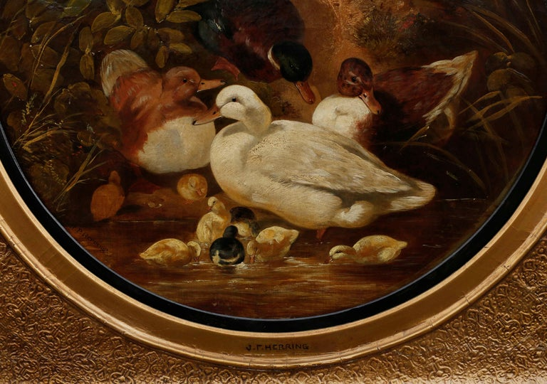 A charming painting by John Federick Herring, Sr. (1795-1865), the scene presents a mallard and family of ducks entering a stream, which is dominated by a white Aylesbury duck. Reeds and rushes frame the composition. The tondo painting is contained
