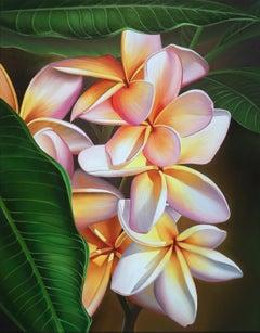 """Hidden Treasure"" Plumeria, Kohala Coast, Hawaii"