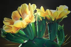 """""""Pears and Coffee - Prickly Pear cactus Blooms"""""""