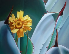 """""""Stuck in the Middle"""" Desert Marigold and Agave"""