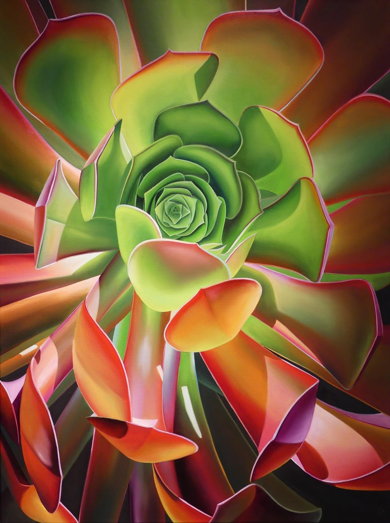 "Dyana Hesson Still-Life Painting - ""Sunburst, Echeveria, Huntington Gardens, CA"""