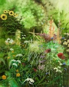 Hampshire Summer Garden, Dylan Lloyd, Original Floral Garden Landscape Painting