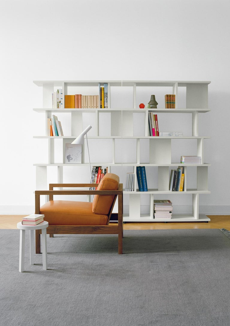 e15 Arie Shelf by Arik Levy For Sale 5