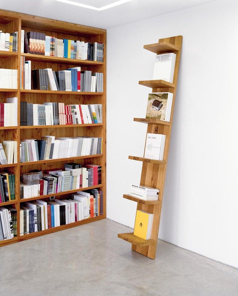 Modern e15 Mate Shelf by Florian Asche For Sale